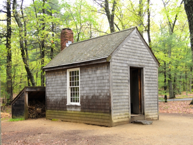 Thoreau Cabin Reproduction